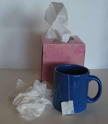 cold flu viruses green tea